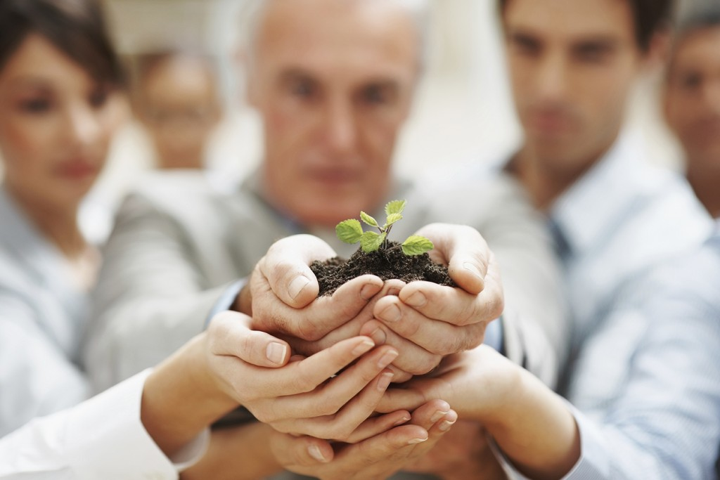 Team growth - Business people holding  a plant together