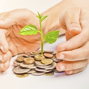 hands holding trees growing on three piles of coins